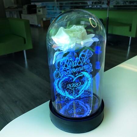 - Biricik Öğretmenim Cam Fanus Kişiye Özel Yazılı Lamba Beyaz Gül 21 cm