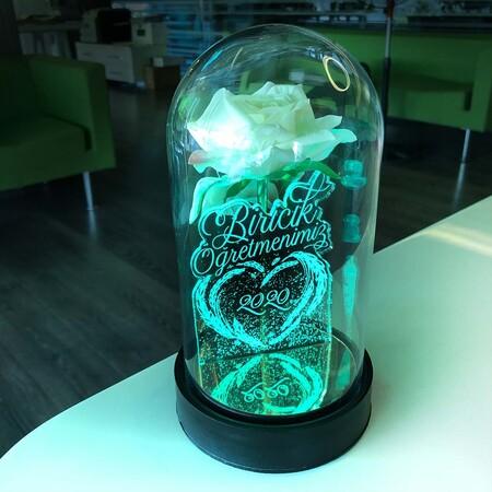 Biricik Öğretmenim Cam Fanus Kişiye Özel Yazılı Lamba Beyaz Gül 21 cm - Thumbnail