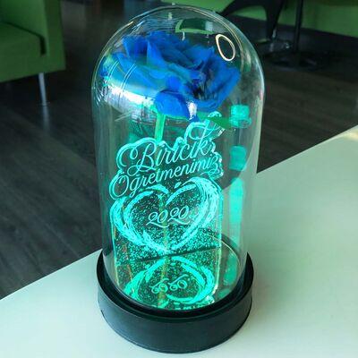Biricik Öğretmenim Cam Fanus Kişiye Özel Yazılı Lamba Mavi Gül 21 cm
