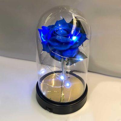 Cam Fanus Mavi Gül Siyah Plastik Tabanlı Lamba