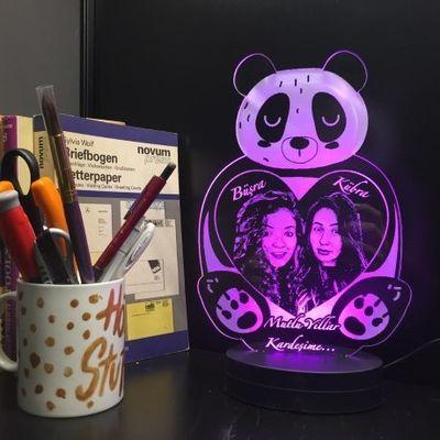 Panda Led Aydınlatma Lambası