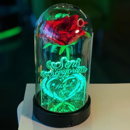 Seni Seviyorum İsme Özel Işıklı Kırmızı Güllü Fanus 21 cm - Thumbnail