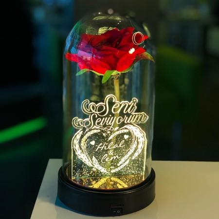 - Seni Seviyorum İsme Özel Işıklı Kırmızı Güllü Fanus 21 cm