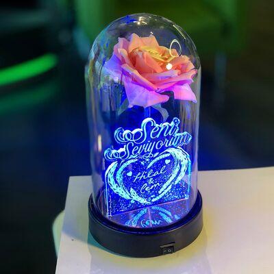 Seni Seviyorum İsme Özel Işıklı Pembe Güllü Fanus 21 cm